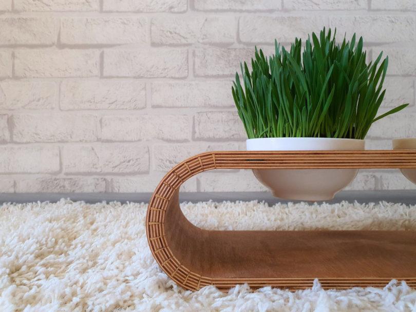 Modern Cat Furniture And Feeder