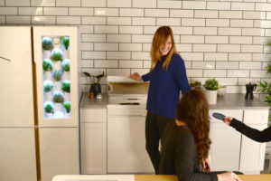 Concept Of Wellness Kitchen