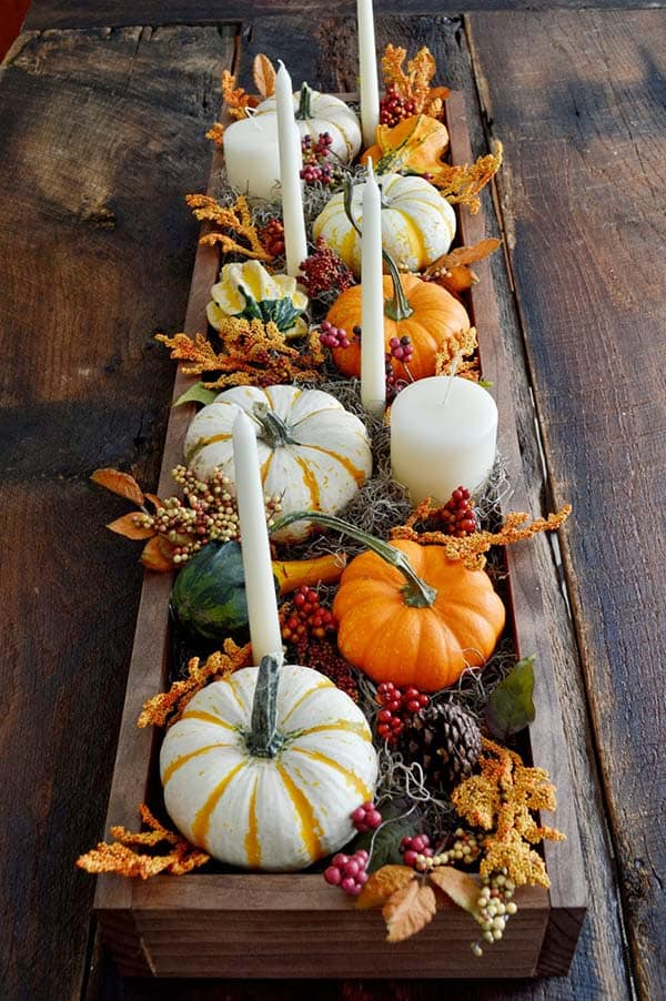 table into art with pumpkins