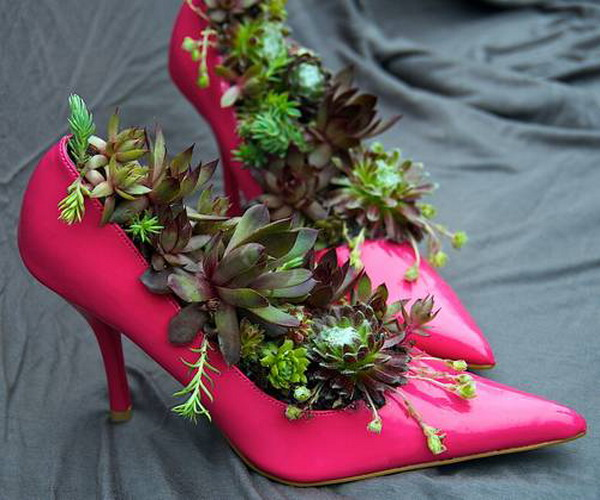 Transform your boots into eco-friendly planters