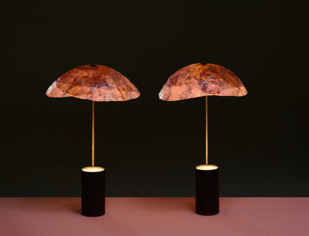 Cabbage Leaf Lampshades