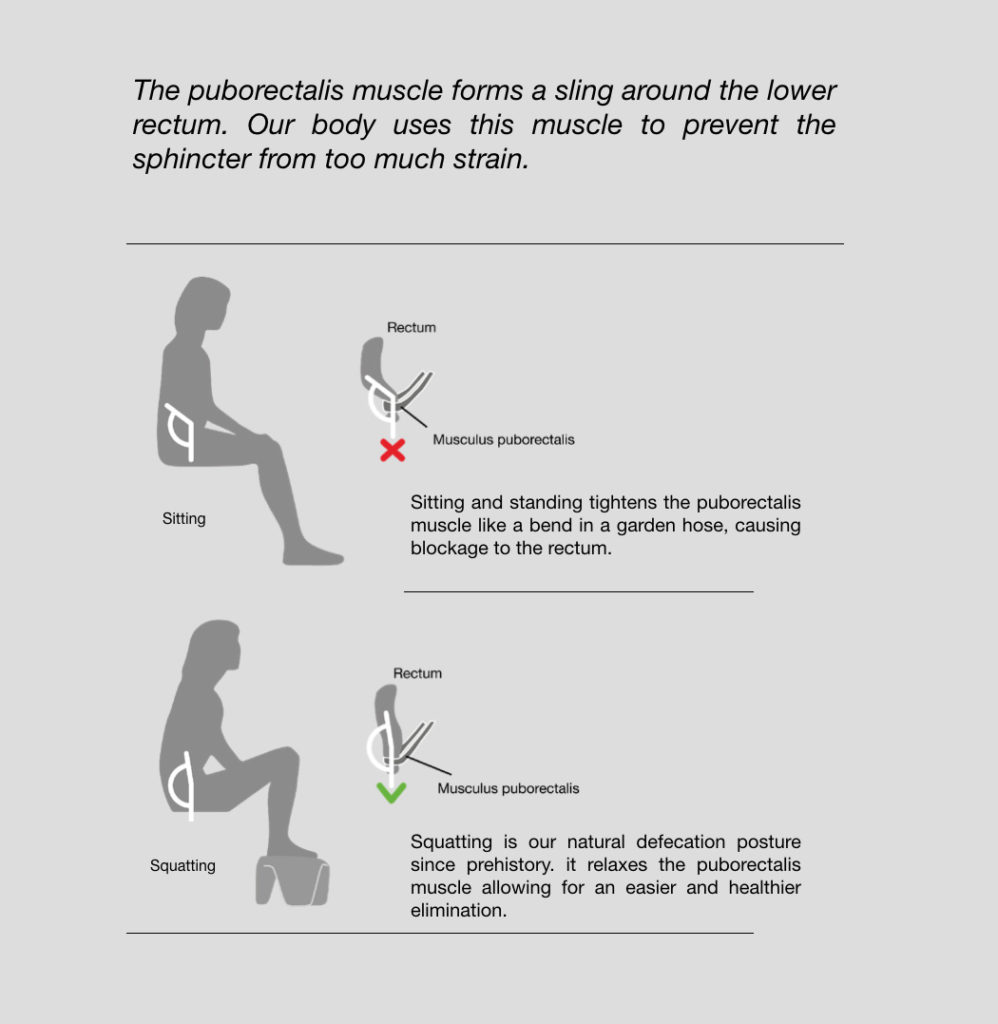 Sitting Position in bathroom