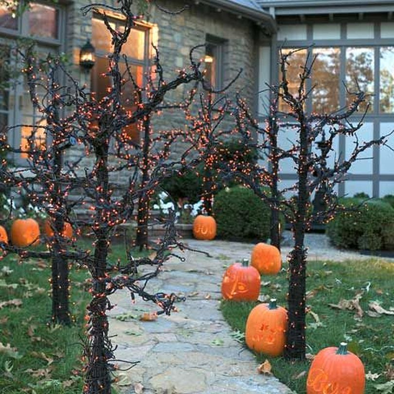 Pathways Adorned with Pumpkins