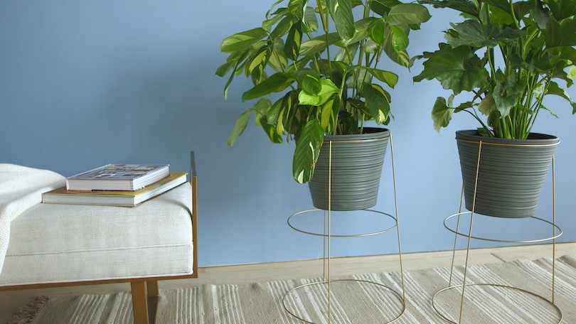 DIY Plant Stands to Bring Out Your Creative Side