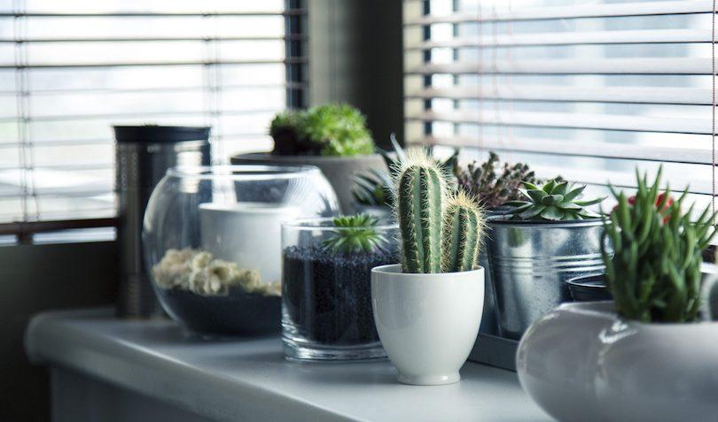 Home Improvment ideas