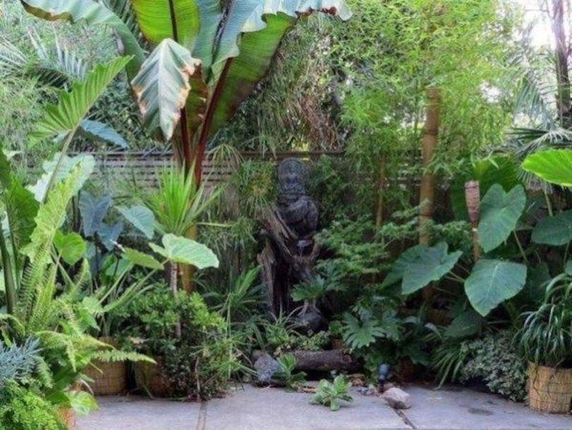 Stunning Tropical Garden